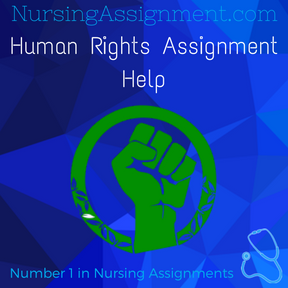 Human Rights Assignment Help