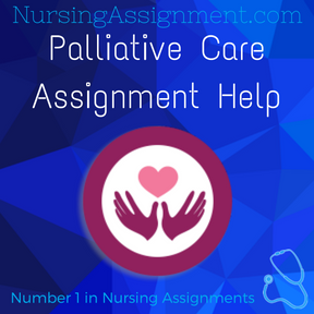 Palliative Care Assignment Help
