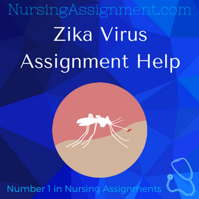 Zika Virus Assignment Help