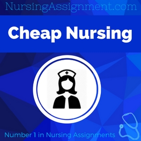 Cheap Nursing Writers Assignment Help