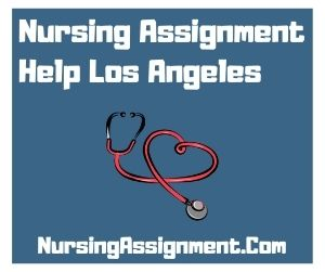 Nursing Assignment Help Los Angeles