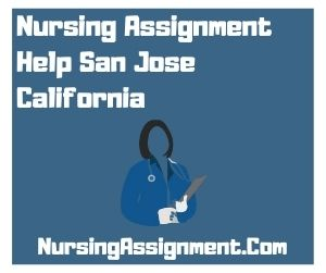 Nursing Assignment Help San Jose California