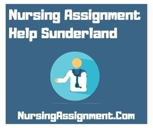 Nursing Assignment Help Sunderland