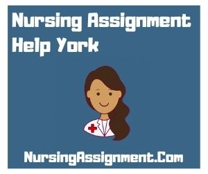 Nursing Assignment Help York